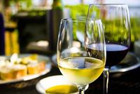 真夏の夜は『スペインワイン』で乾杯!