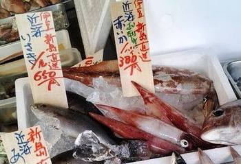 新島赤イカ