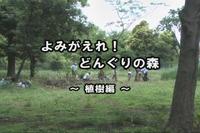 よみがえれどんくりの森 ~植樹編~