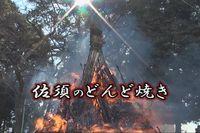 佐須のどんど焼き