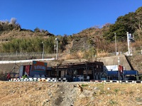 2.12 小田原 早川ダンゴウオ