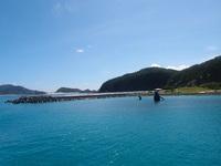 緊急企画!沖縄慶良間諸島ツアー