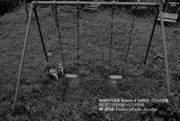 金沢伸吾写真展 Memory of Park802 ころんの記憶