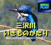 ドキュメンタリー「三沢川いきものがたり」予告編と試写会ご案内
