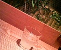 もつ鍋kuroki(くろき、クロキ)/吉祥寺駅北口 2009/12/29 15:08:59