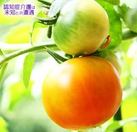 マーガリンとサラダ油 2017/08/14 10:00:00