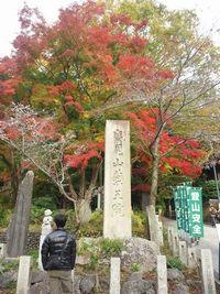 高尾山の紅葉の見ごろは?