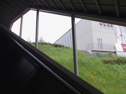 エスカレータから校舎を眺める