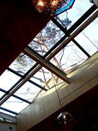 カフェの天窓の眺め