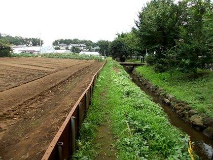 練馬区・関町南の農園風景