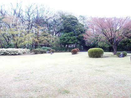 当時は樹がなく、絶景の富士が見えた。