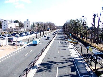武蔵野スカイマーク