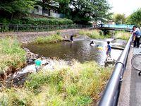 景観と清流を守る>環境市民活動と地域経営に思う