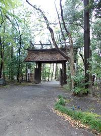 泰山荘の門・内側から