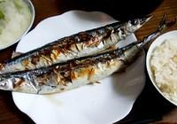 今日のJご飯>生さんま焼