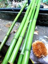 真竹を洗う