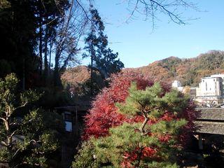 紅葉の高尾山郷