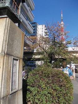 赤羽橋で東京タワーを見る