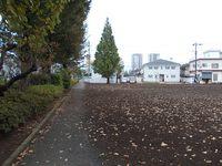 雨が上がって武蔵野散歩>距離は増えるが健忘症に困る