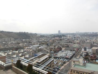 公民館からの眺め