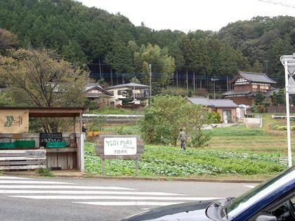 YUGIMURA Farm FIO農場
