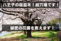 八王子の穴場!秘密の花園教えます!東京都高齢者洋服下着専門店イツミヤ