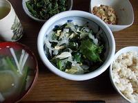 今日のJご飯>ワカメのごま油合えサラダ