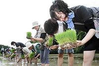 初めての田植えを通して、学習を・・・!