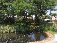 八王子、横川弁天池公園。
