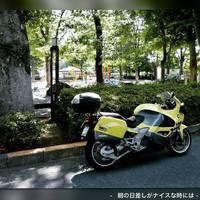 昨日06月04日(月曜)のJETSET-WEB活動記