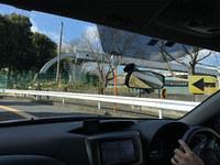 土曜日。午前の部終了(^o^)  千葉県からでした。