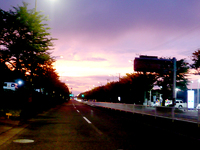 新秋川街道創大、北東あたり。