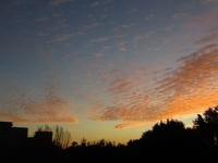うろこ雲の朝焼け