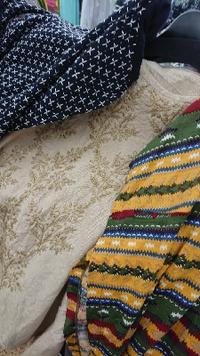 インド綿、メーカー放出品入荷