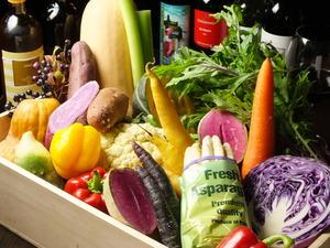 ぎんさいキレイな野菜達