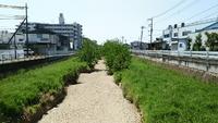 ほんとに空っぽ空堀川散歩と都市計画道路3・4・11号保谷東村山線開発