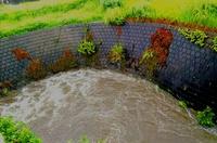 台風12号と山田川の増水