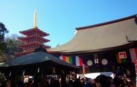 関東三大不動・高幡不動尊へ2016年の初詣