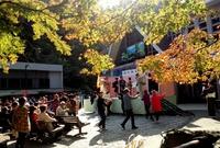 紅葉が色づき始めた高尾山で「もみじまつり」開催中