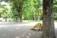 競技場だけじゃない!富士森公園にもブランコや滑り台があるって知ってた?