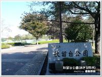 バラ園は、期待外れでした・・・~秋留台公園(あきる野市)~