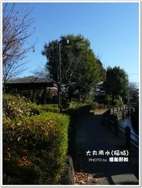 心地良い散歩道~大丸用水遊歩道(稲城)~