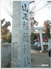 あの斎藤佑樹投手が!?~山王稲穂神社(小金井市)~