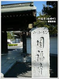 立派な仁王門が!~円福寺(瑞穂町)~