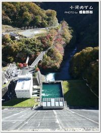 小河内ダムの「ダムカード」ゲット!