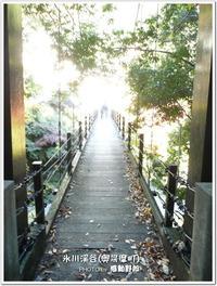 氷川渓谷(奥多摩町)の紅葉-2012年11月16日-