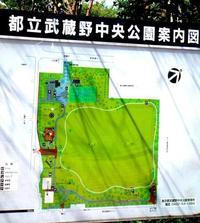 吉祥寺から「武蔵野中央公園」に足を運んでみよう! 2011/08/20 07:10:10