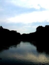 朝の井の頭公園です〜! 2011/04/23 07:05:41