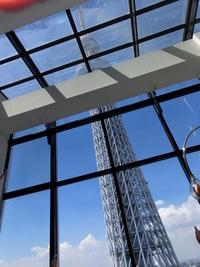 NHK首都圏ネットワークでカッチェル紹介されました。