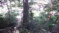片倉城趾公園(八王子の古城)